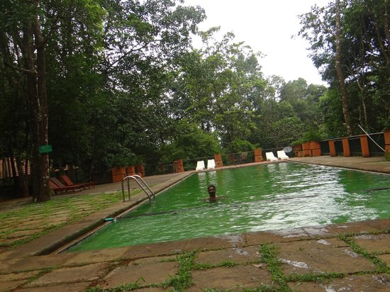 Pool for Resorts in wayanad with swimming pool