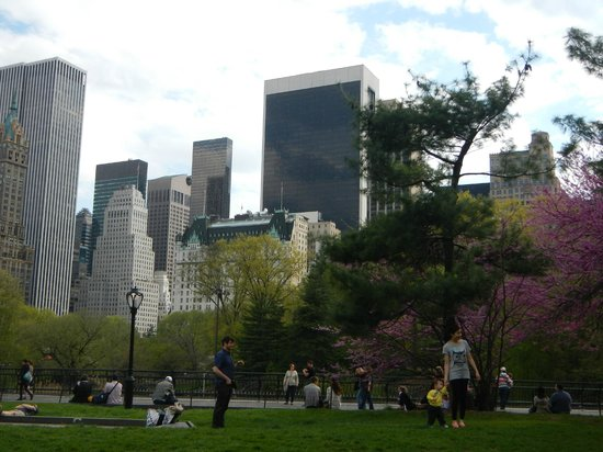 paseo por central park con greg picture of real new york tours new york city tripadvisor. Black Bedroom Furniture Sets. Home Design Ideas