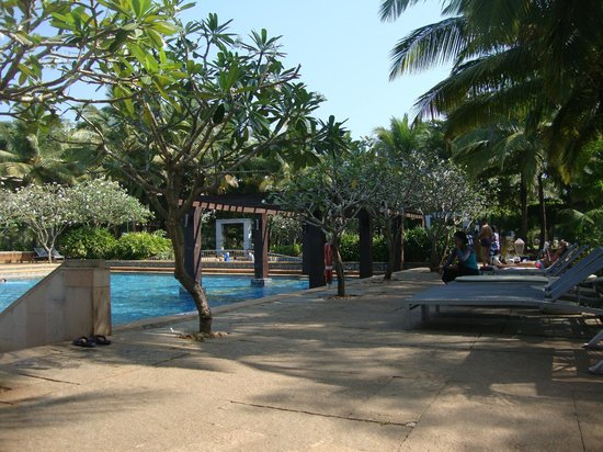 Pathway Near The Pool
