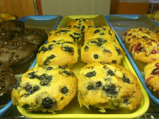 Blueberry Muffins - Picture of Woolfies Bakery, Dennis Port ...