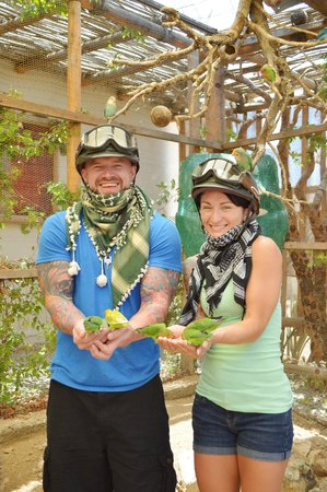 Razor experience at cactus picture of cactus atv tours cabo san