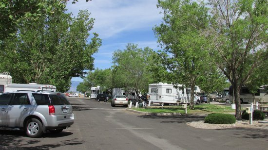 American RV Park: view of park