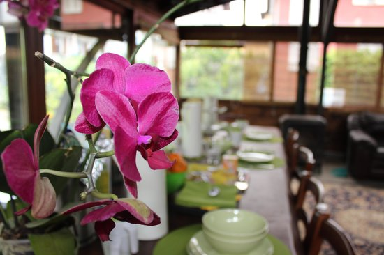 Bed and Breakfast Greenfairy-Porlezza