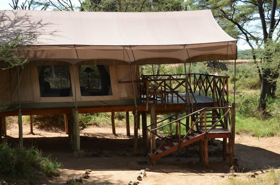 Exterior Habitaci N Picture Of Elephant Bedroom Camp Samburu National Reserve Tripadvisor
