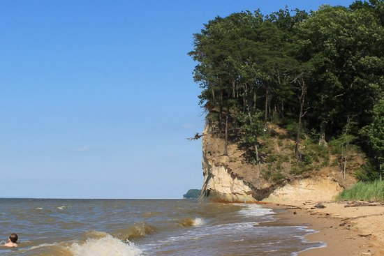 Sheer cliffs provide outstanding backdrop picture of for Island beach state park fishing report