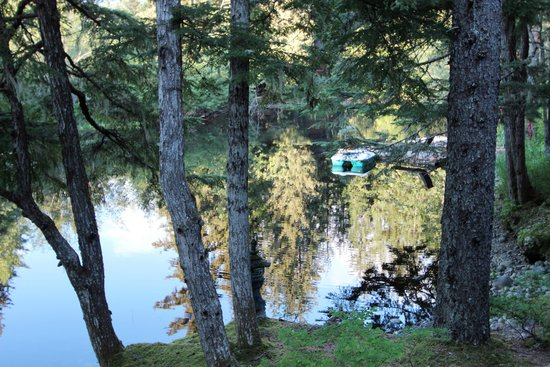 """Pearson's Pond Luxury Inn and Adventure Spa: The Pond at the """"Golden Hour"""""""