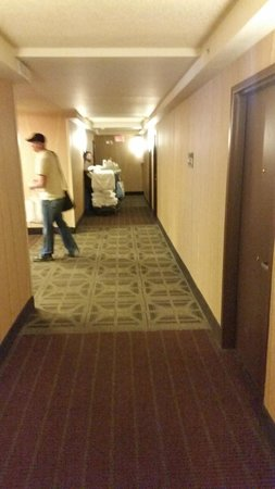 Doubletree Cleveland Downtown / Lakeside: Hallway