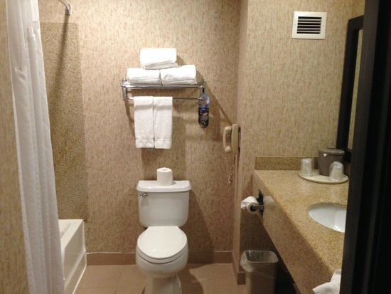 Holiday Inn Express Hotel & Suites Roseville-Galleria Area: Bathroom