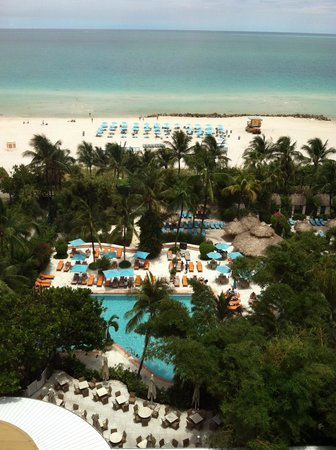 The Palms Hotel & Spa: View from our room
