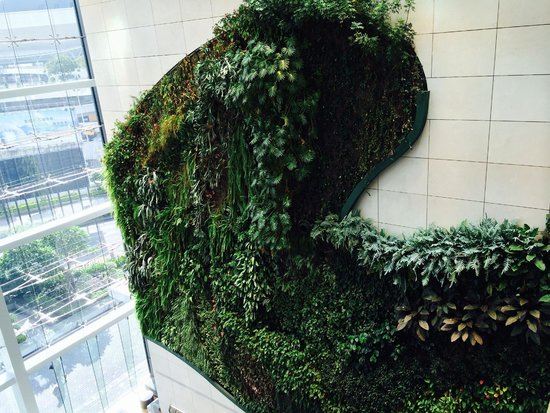 Hotel ICON: Vertical garden was awesome