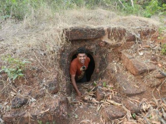 Small Garden Man Cave : Small cave in the backyard of dongarmatha picture