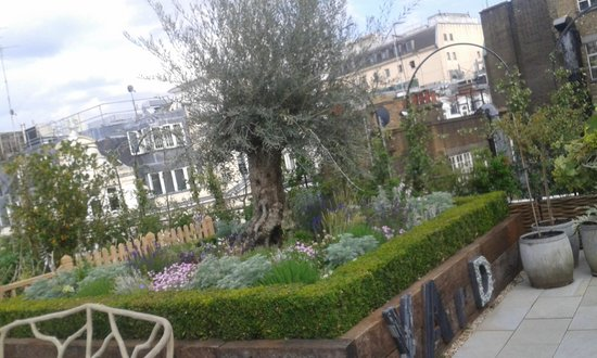 Garden Kitchen Borders On The 4th Floor Roof Terrace Picture Of Ham Yard Hotel London