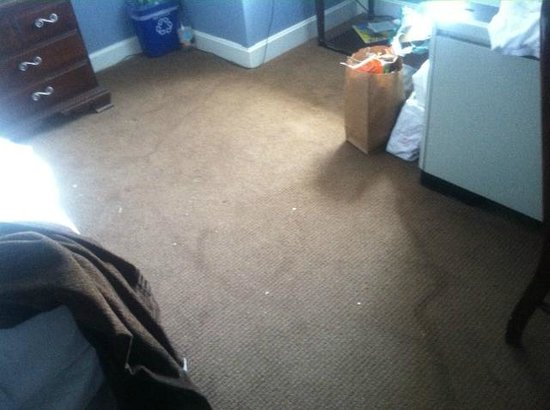 The Essex, Vermont's Culinary Resort & Spa: Water damage on the rug in our room