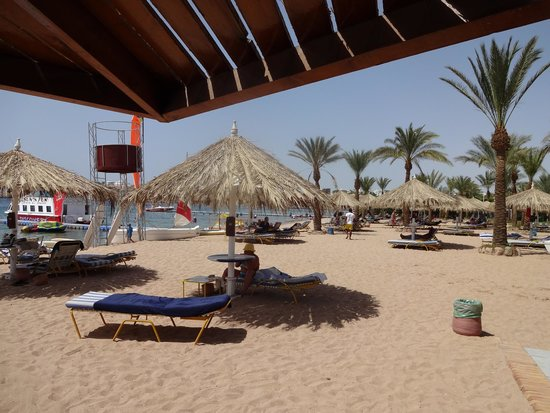Hilton Sharm Dreams Resort: beach