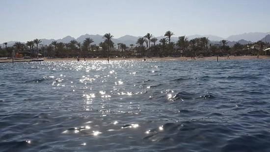 Hilton Sharm Dreams Resort: the private beach