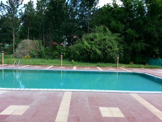Swiming pool picture of mc resort bandipur tripadvisor for Resorts in bandipur with swimming pool