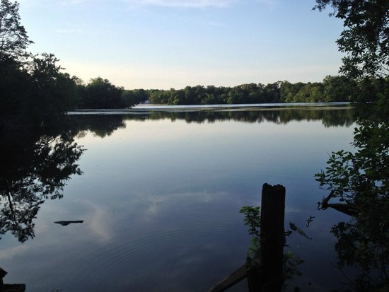 Parvin lake picture of elmer new jersey tripadvisor for Parvin state park cabin pictures