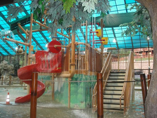 Wild bear falls waterpark picture of westgate smoky for About you salon gatlinburg tn