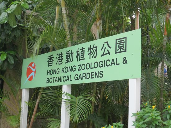 Hong Kong Zoo Botanical Gardens Picture Of Hong Kong Zoological And Botanical Gardens Hong