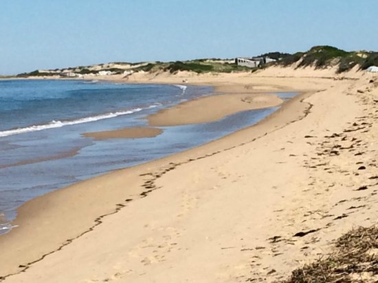 Herring Cove Beach Provincetown Picture Of Cape Cod
