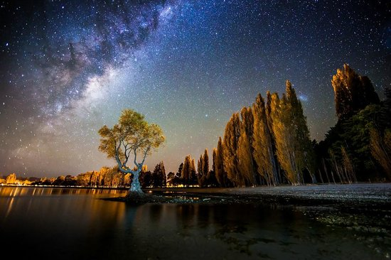 las vegas attractions and tours with Locationphotodirectlink G255122 D6780592 I102122036 New Zealand Photography Tours Queenstown Otago Region South Island on D626 Ttd furthermore Eric Bellinger At Sams Town Live moreover D511 5034P45 furthermore Horseshoebend further D727 Ttd.