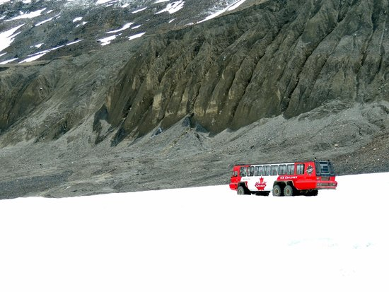 Icefield Centre: The bus to the glacier.
