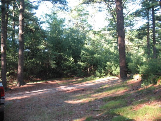 Forge Pond Campground