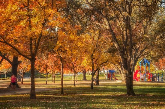 Vacaville has plenty of parks for your family picnic, morning jog, or a peaceful afternoon nap i