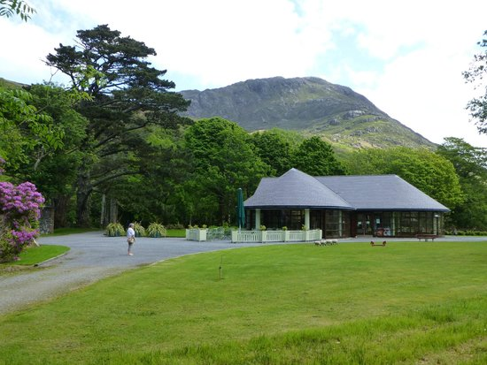 Grotto On Woodland Walk Picture Of Kylemore County