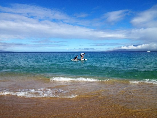 Royal Lahaina Resort: Beach at hotel
