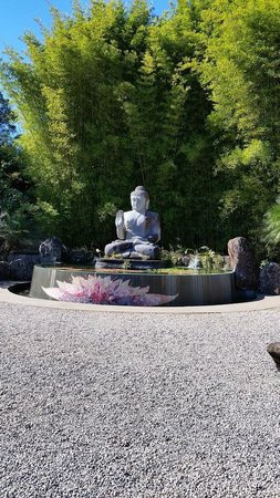 Buddha pool picture of crystal castle shambhala for Castle gardens pool