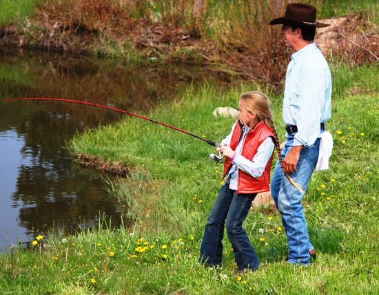 Fishing in our trout stocked pond or the poudre river for Stocked trout fishing