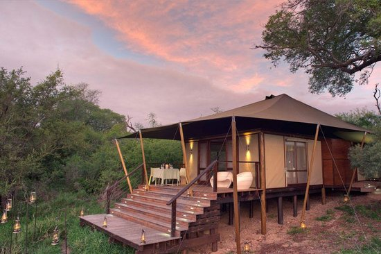 Photo of AndBeyond Ngala Tented Camp Ngala Private Game Reserve