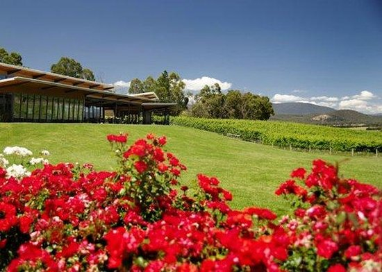 Balgownie Estate Vineyard Resort & Spa