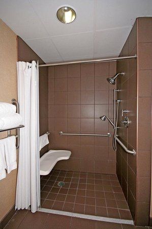 wheelchair accessible w roll in shower holiday inn express apex picture of holiday inn express. Black Bedroom Furniture Sets. Home Design Ideas