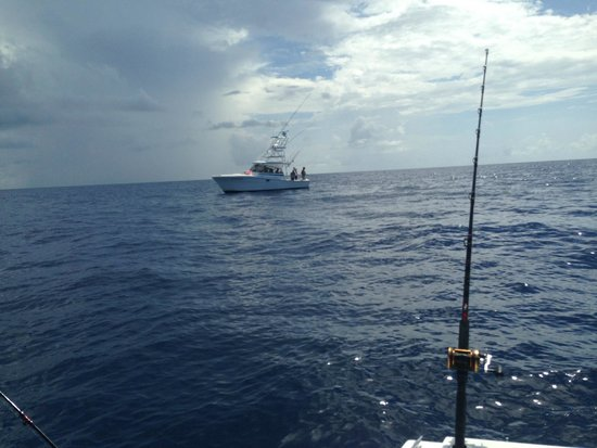 301 moved permanently for Cocoa beach fishing charters