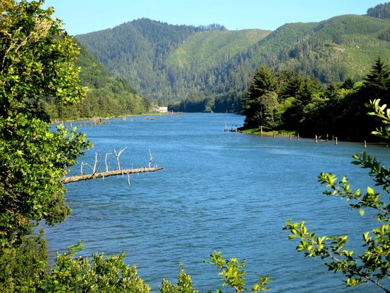 Siletz river picture of the kernville steak seafood for Siletz river fishing report