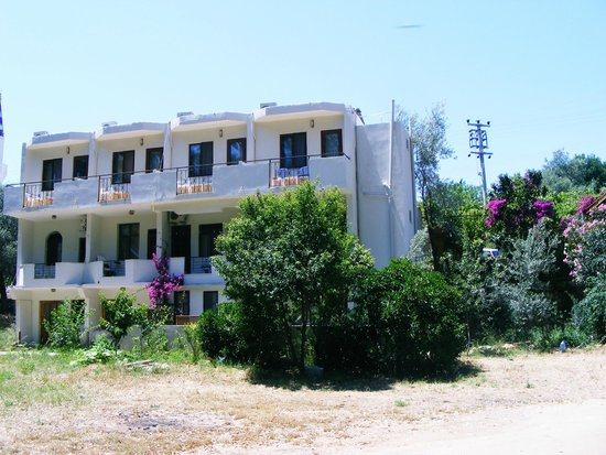 Photo of Eucalyptus Pension Patara
