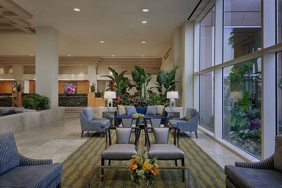 Lobby Lounge Picture Of Moody Gardens Hotel Spa Convention Center Galveston Tripadvisor