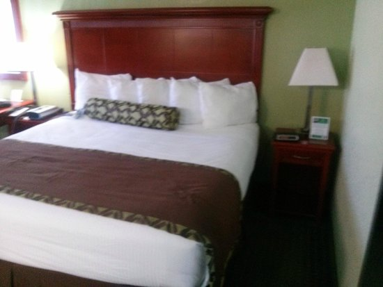 Alexis Inn & Suites Nashville Airport Opryland: King size bed