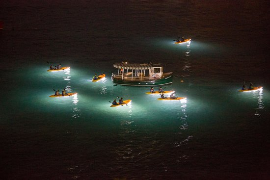 See the bright lights on the kayak and the pretty lights for Kayak lights for night fishing