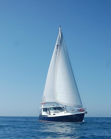 Adworld Private Charters - Day Cruise