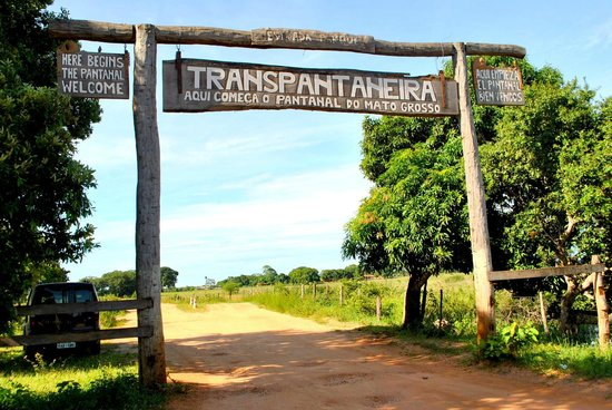 Gasparetour Pantanal and Brazilian Savanna Eco tours