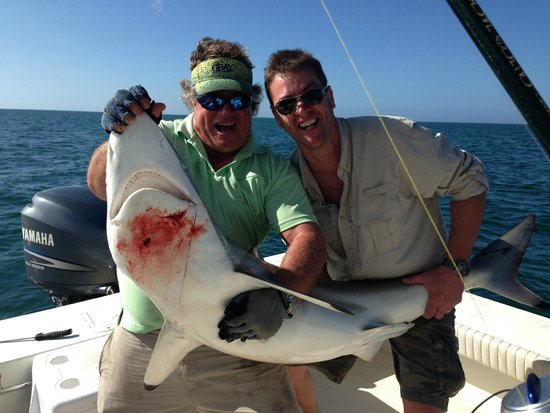 Shark Fight Naples Fl Picture Of Ms B Haven Fishing