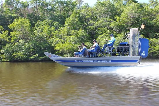 Trip Advisor Best Everglades Tours