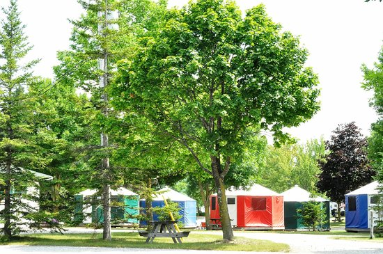 Yogi Bear's Jellystone Park and Camp-Resort Toronto: Canadian Habitats