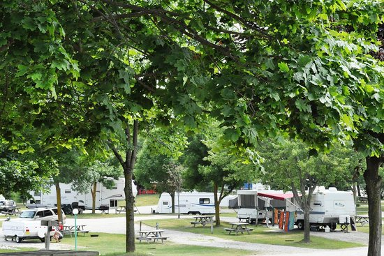 Yogi Bear's Jellystone Park and Camp-Resort Toronto: Trailer Sites
