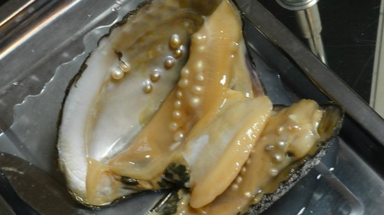 Live oysters with pearls inside - photo#26