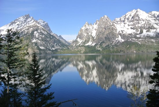 grand teton national park map html with Locationphotodirectlink G143029 D104348 I104350394 Jenny Lake Trail Grand Teton National Park Wyoming on Carduus Nutans1 l moreover Grand Canyon Waterfalls Falls n 5537451 as well 795367 Tetons Wyoming together with Fishing as well Red Paintbrush l.