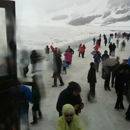 Icefield Centre: Ice